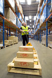 Warehouse worker with boxes on pallet truck looking up at shelves Royalty Free Stock Image