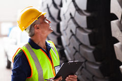 Warehouse worker inspecting Royalty Free Stock Photo