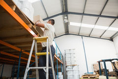 Warehouse worker loading up pallet Royalty Free Stock Image