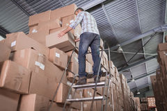 Warehouse worker loading up pallet Royalty Free Stock Images