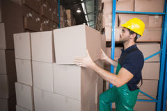 Warehouse worker loading up a pallet Royalty Free Stock Photography