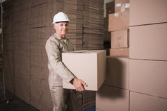 Warehouse worker loading up pallet Royalty Free Stock Photo