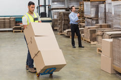 Warehouse worker moving boxes on trolley Royalty Free Stock Photography