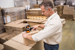 Warehouse worker preparing a shipment Royalty Free Stock Images
