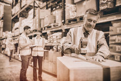 Warehouse worker sealing cardboard boxes for shipping royalty free stock image