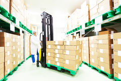 Warehouse worker with stacker Stock Image