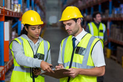Warehouse workers interacting with each other. In warehouse Royalty Free Stock Photos