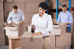 Warehouse workers packing up boxes Stock Images