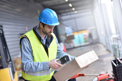 Warehouseman scanning products. Warehouseman on dock scanning products ready for shipment Stock Photo