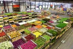 Warenkörbe der verschiedenen Vielzahl der Blumen, die bei Aalsmeer FloraHolland inszenieren stockbilder