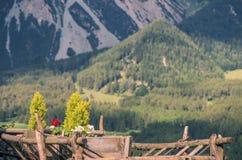 Warenkorb mit Blumen auf einem Hintergrund von Bergen Stockfotografie