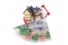 Warenkorb mit Miniaturhaus auf Eurobanknoten Lizenzfreie Stockfotografie
