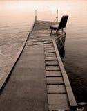 Warf auf dem Teich Lizenzfreies Stockbild