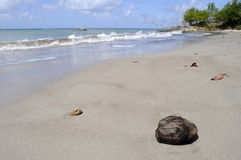 Warfe Beach St Lucia. Warfe Beach in St Lucia the West Indies Royalty Free Stock Images