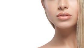 Warg ramion podbródka nosa uśmiechu Pięknej kobiety portreta twarzy blond studio Zdjęcie Stock