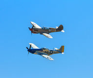 Warhawk P-40 и мустанг P-51 летая совместно Стоковые Изображения RF