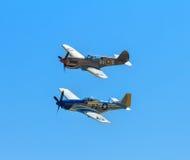 Warhawk P-40 и мустанг P-51 летая совместно Стоковые Фото