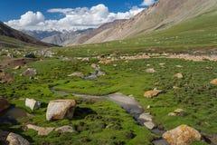 Warila passerande i sommar i den Leh staden, Leh, Ladakh, Jammu Kashmir, I arkivbild