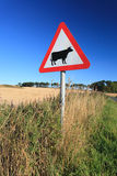 Waring sign for cow in  the country side in Aberdeen, Scotland U Stock Photo