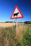 Waring tecknet för ko i landet sid i Aberdeen, Skottland U Arkivfoto