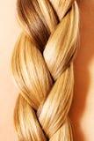 Warkocz fryzura Blond Długie Włosy zakończenie up fotografia royalty free
