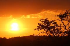 Warkwickshire-Sonnenuntergang stockfoto