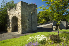 Warkworth Bridge, Northumberland. Arched 14th Century bridge at Warkworth, Alnwick, Northumberland, England, over the River Coquet, with cobblestones and flowers Royalty Free Stock Photo