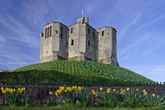Warkworth Castle royalty free stock photo