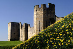 Warkworth Castle and boat Royalty Free Stock Images