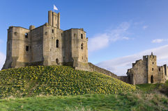 Warkworth Castle in spring Royalty Free Stock Images