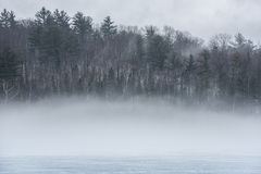 Warm air, cold layers, pale waterfront deciduous Eastern Ontario forest. Stock Image