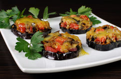 Warm appetizer of eggplant under cheese Stock Photography