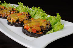 Warm appetizer of eggplant under cheese Royalty Free Stock Photo