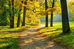 Warm autumn Royalty Free Stock Images