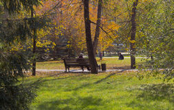 Warm autumn day in the city Park Stock Image