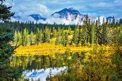 Warm autumn day in park Jasper Stock Image