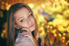 Warm autumn portrait of a young woman. Golden leaves behind royalty free stock photo