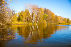 Warm . Autumn Reflection royalty free stock image