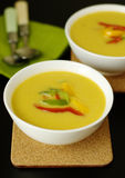 Warm autumn soup Stock Photography