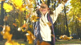 Warm autumn sunshine on cute little girl throwing yellow leaves in camera stock footage
