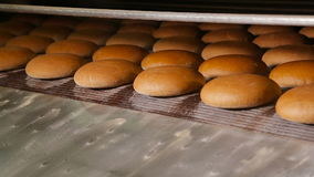 Warm baked bread at the exit of the oven stock video footage