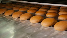 Warm baked bread at the exit of the oven stock video