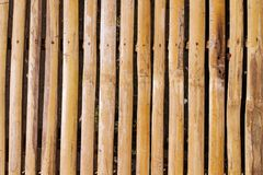 Warm brown wooden plant table photo background. Wooden plank table top view. Royalty Free Stock Photography