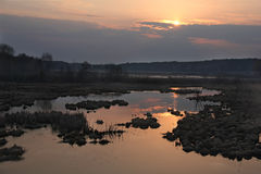 Warm calm sunset over swamps in Ukraine, Kiev. Landscape with marsh and sunset stock images