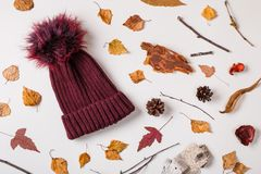 Warm cap in autumn composition royalty free stock images
