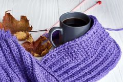 Warm cap, scarf and hot drink Stock Photo