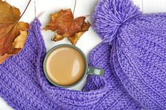 Warm cap, scarf and hot drink Royalty Free Stock Photography