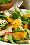 Warm chard salad. Warm chard salad with pumpkin and chicken.Rustic style Royalty Free Stock Image