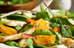 Warm chard salad. Stock Images