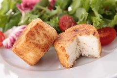 Warm cheese and salad Stock Photography